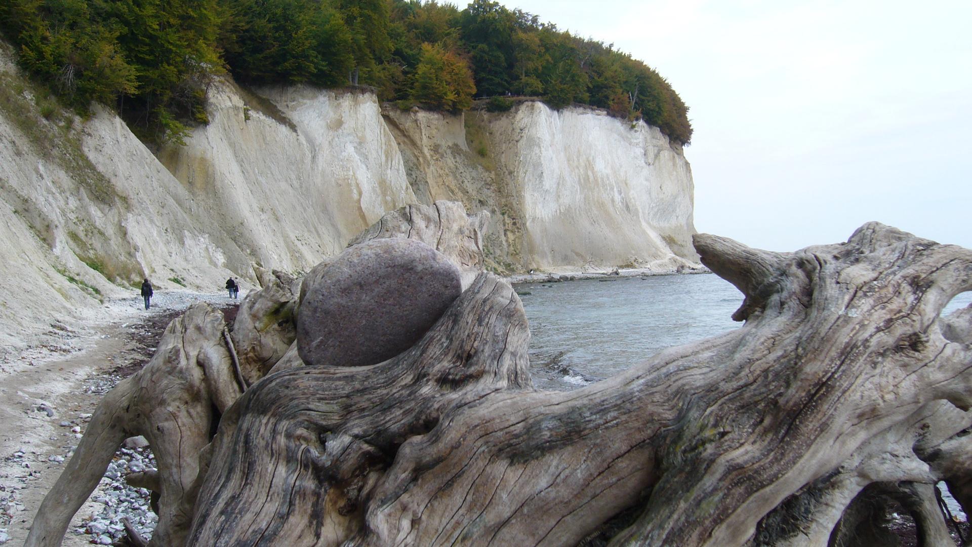 Der Kreidefelsen auf Rügen