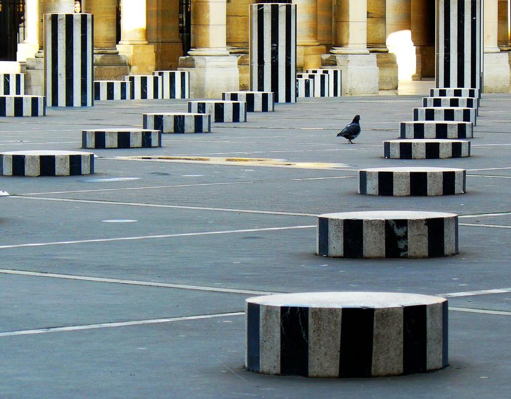 Der Künstler Buren und eine Taube