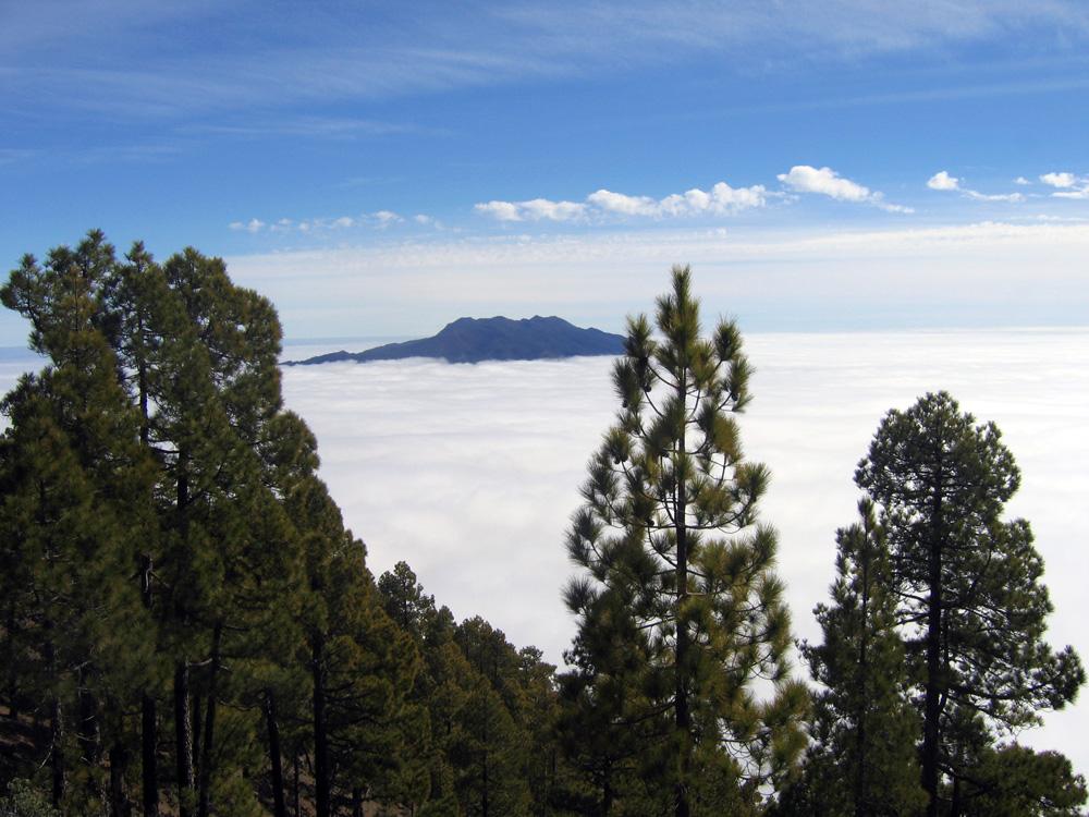 Der La Palma-Klassiker