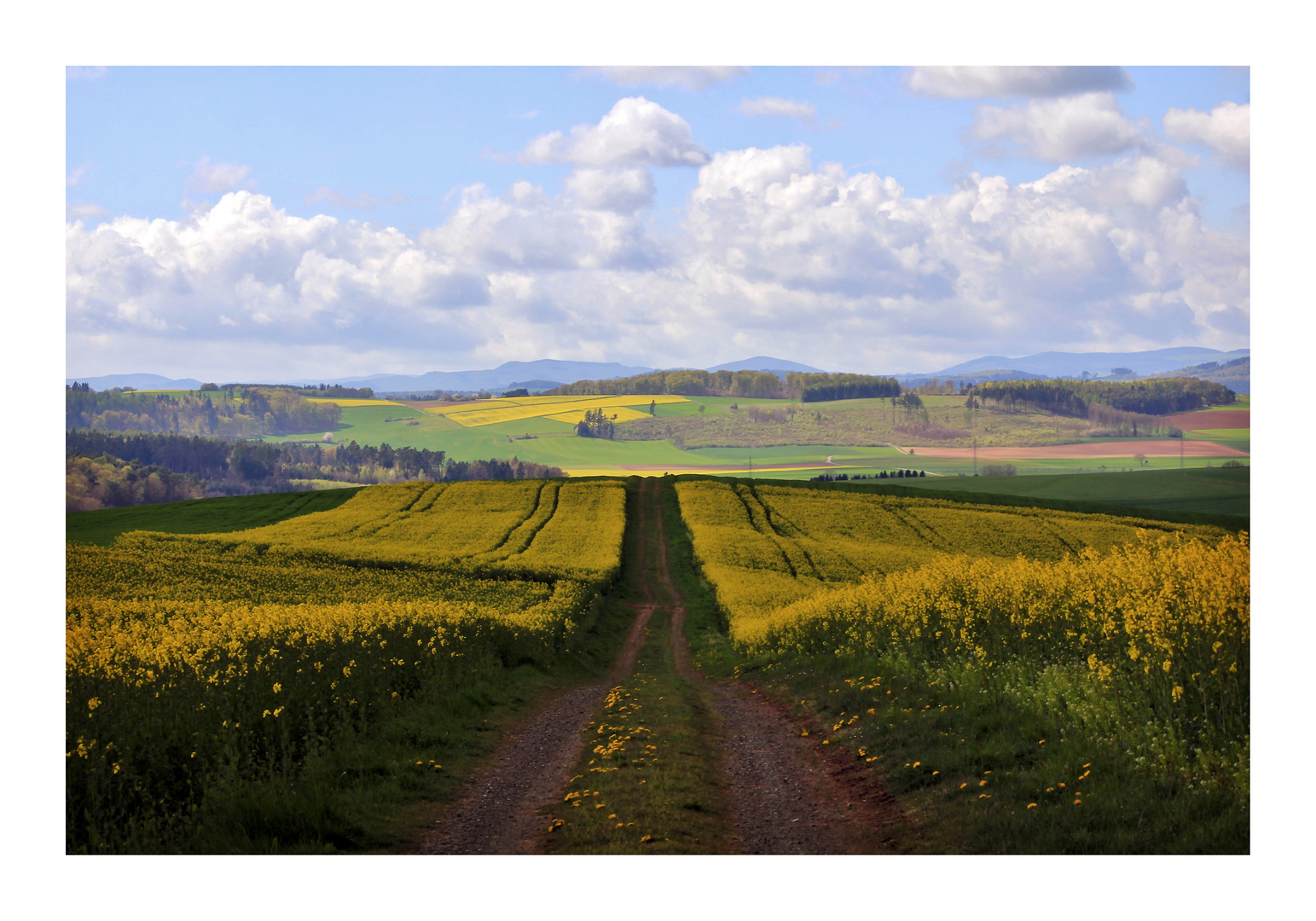 Der Landweg