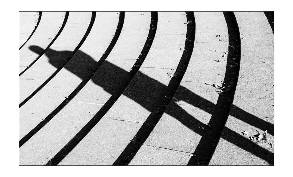 Der lange Schatten
