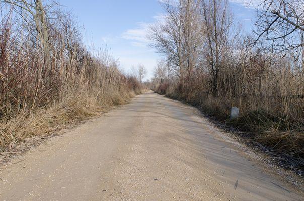 Der lange Weg.........