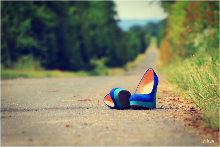 *Der lange Weg*