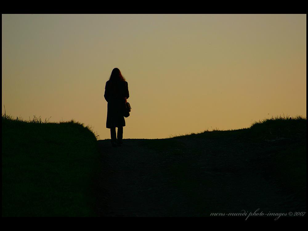 Der lange Weg ...