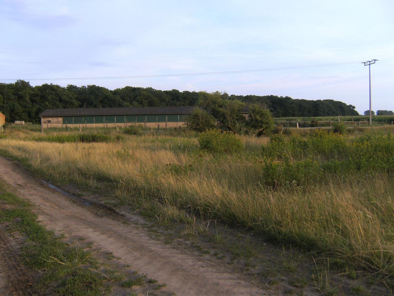 Der lange Weg in Karow