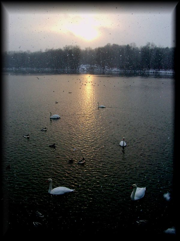 Der Lech bei Schneefall und Sonnenschein ....