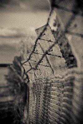 Der Leidensweg zum KZ Langenstein Zwieberge