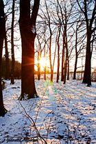 Der letzte Schnee...