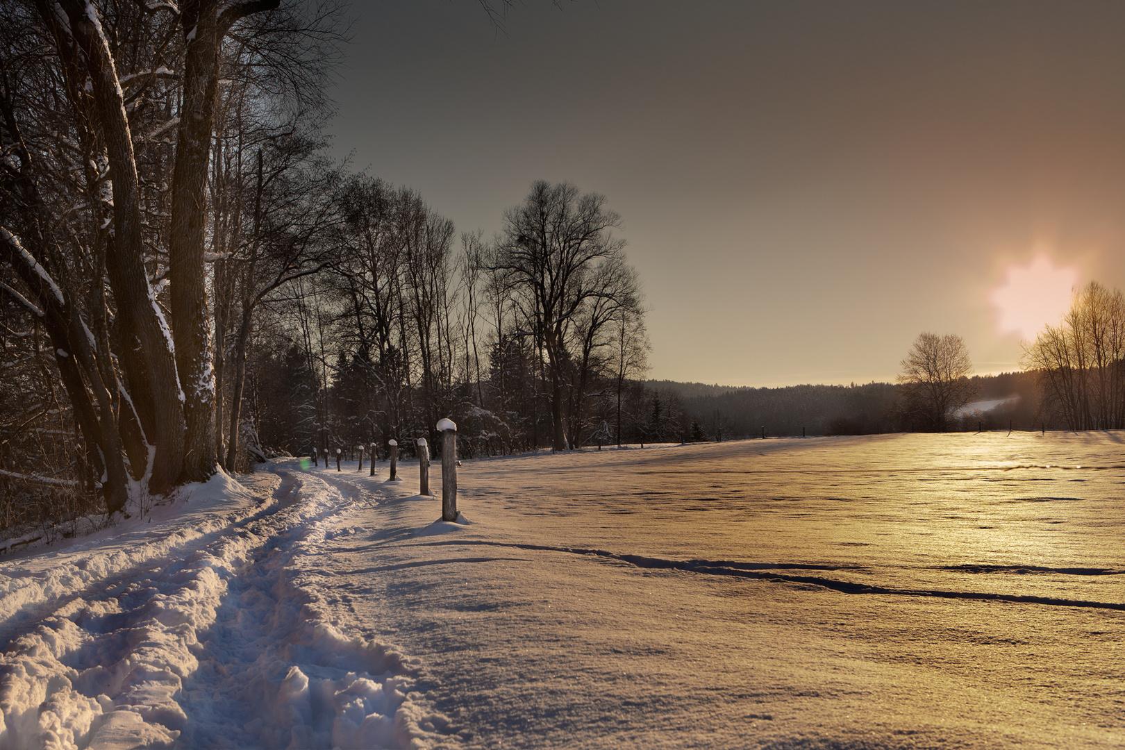 Der letzte Winterspaziergang...