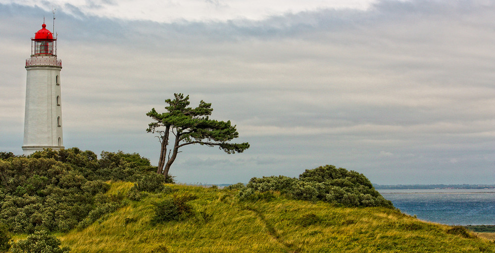 Der Leuchtturm auf Hiddensee