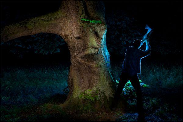 Der Lindenkönig und der Holzfäller