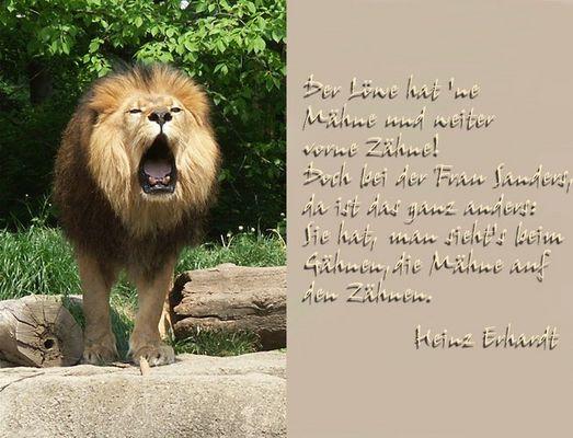 Der Löwe