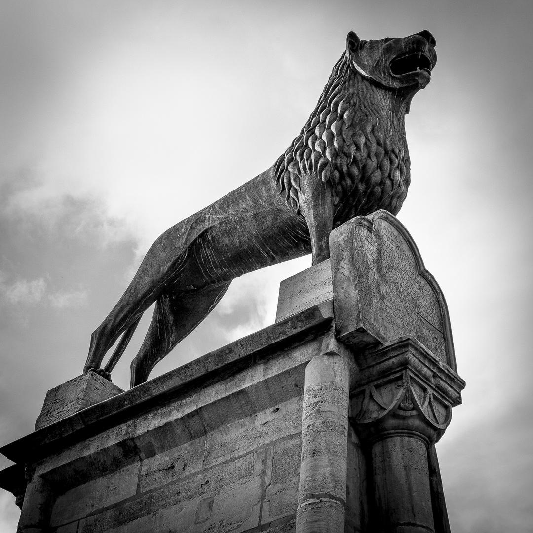 Der Löwe ist los!