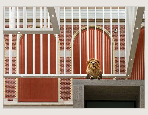 Der Löwe ist los im Rijksmuseum