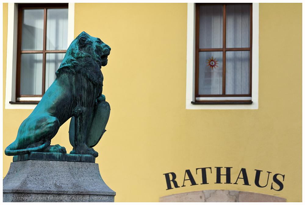 Der Löwe vorm Rathaus