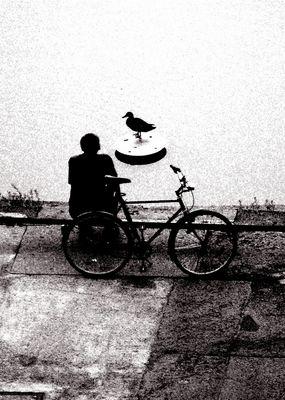 Der Mann und die Ente