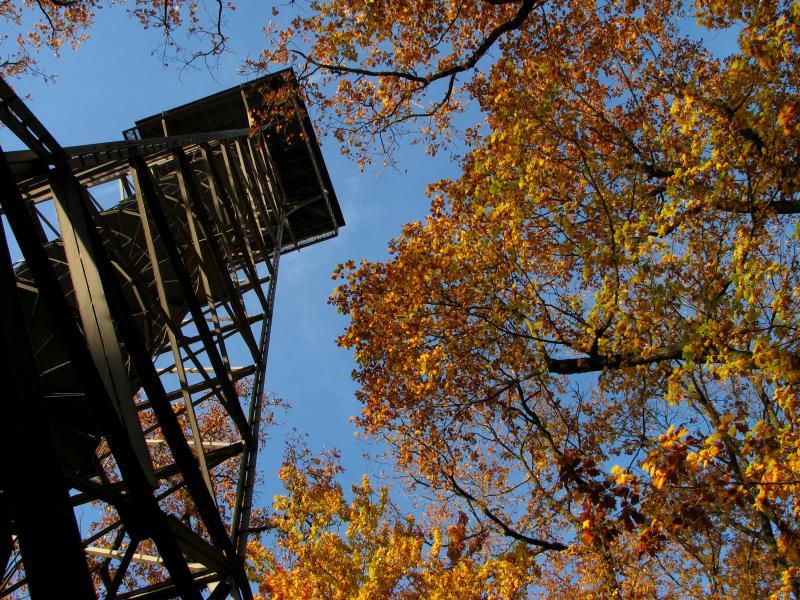 Der Meisterturm bei Hofheim