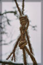 Der Mensch ist ein Seil,...