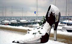 Der modische Schneeschuh