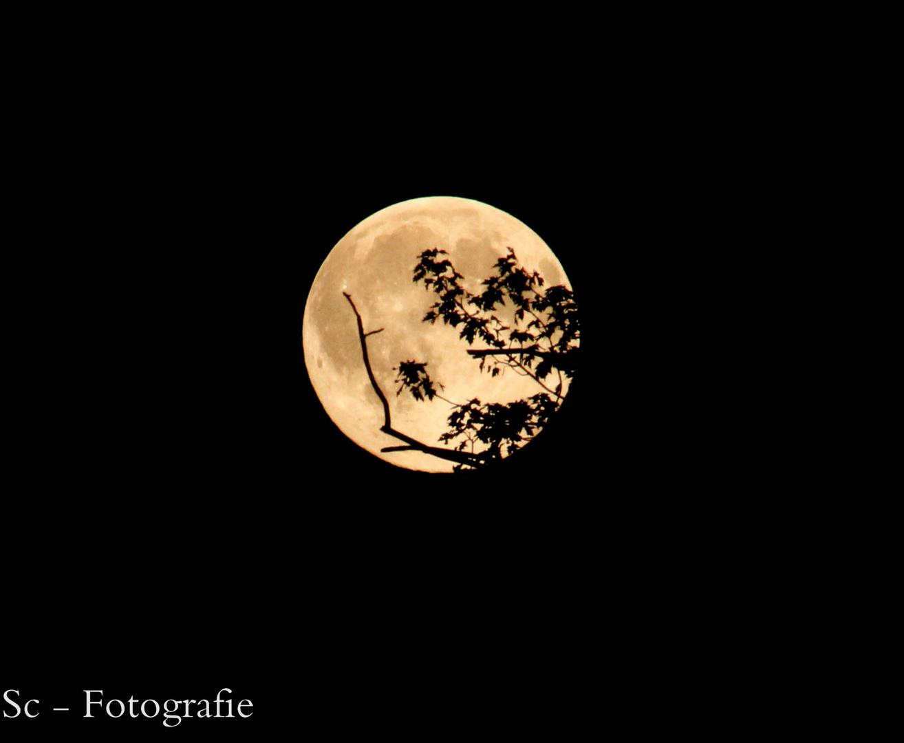 Der Mond am 13.06.2014 (: