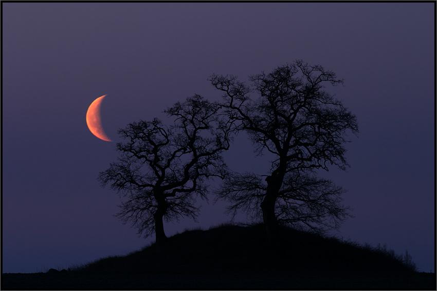 Der Mond am Himmel