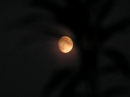 der Mond heute Abend...