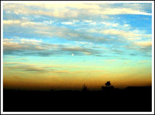 Der Mond ist aufgegaahaangen... :-))