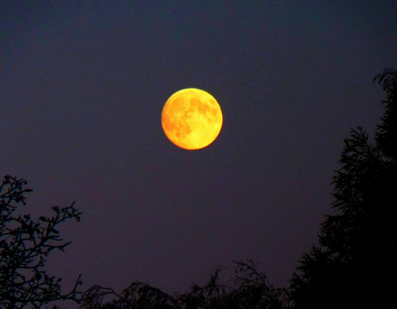 Der Mond ist eine Scheibe