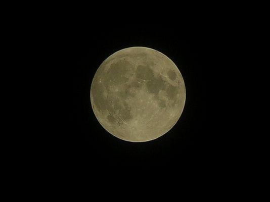 Der Mond (Nikon coolpix 8800)