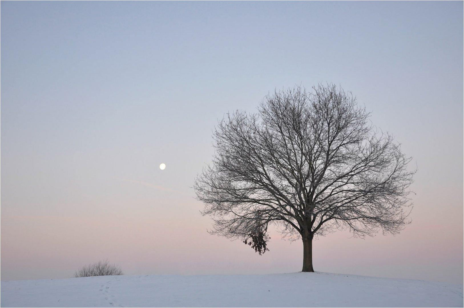der Mond scheint dazu......
