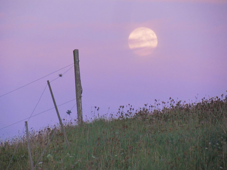 Der Mond über dem Hügel