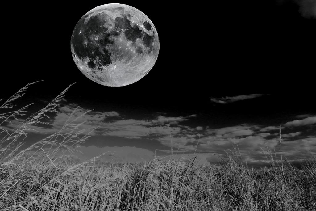 Der Mond vom 08092014