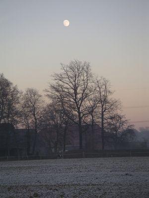 Der Mond zur Dämmerung