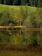 Der Moorsee im Herbst