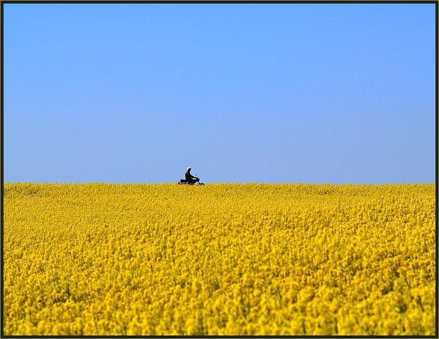 Der Mopedfahrer....