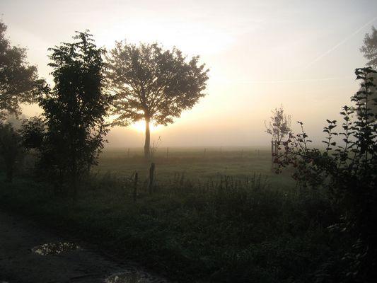 Der Morgen...