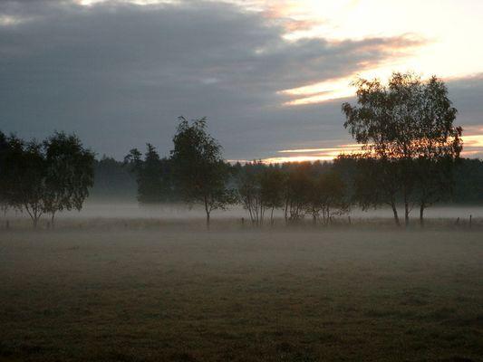 Der Morgen beginnt