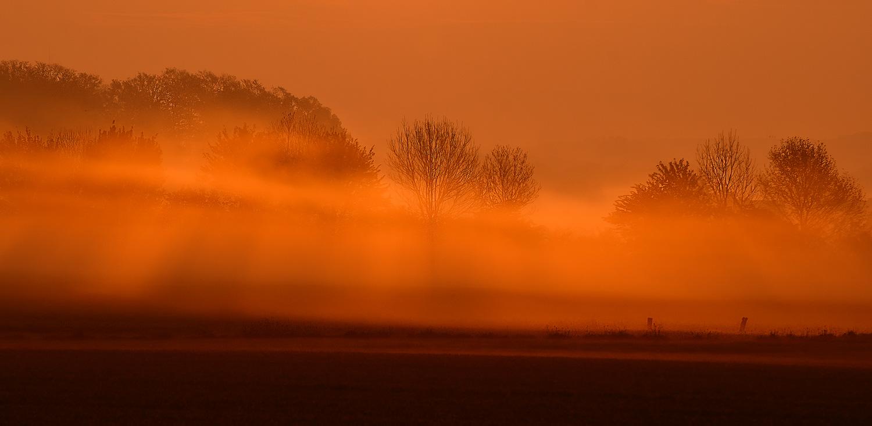 Der Morgen erwacht im goldenen Licht