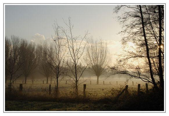 Der Morgen nach dem ersten Frost
