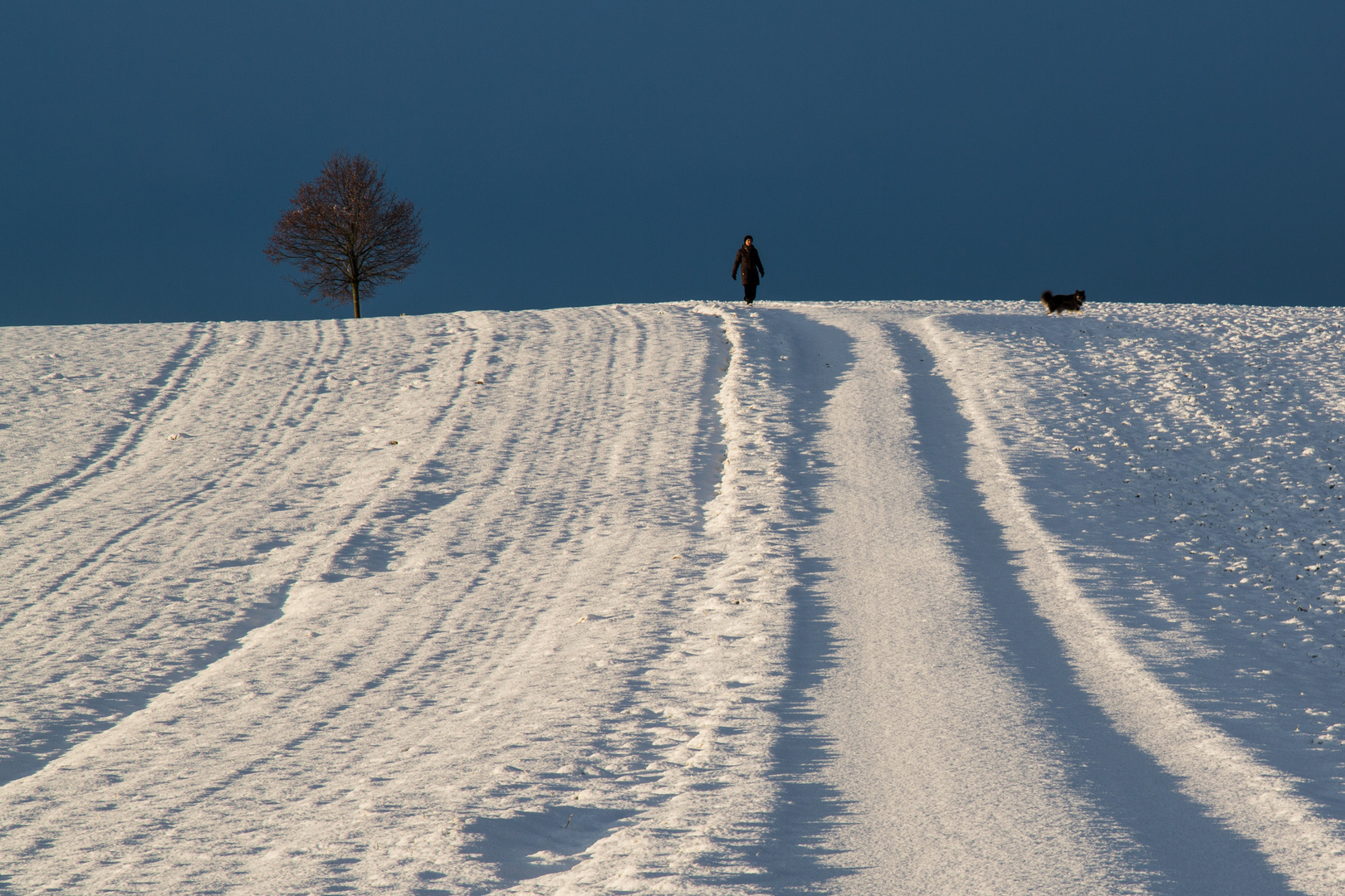 Der Morgen nach dem Schneefall