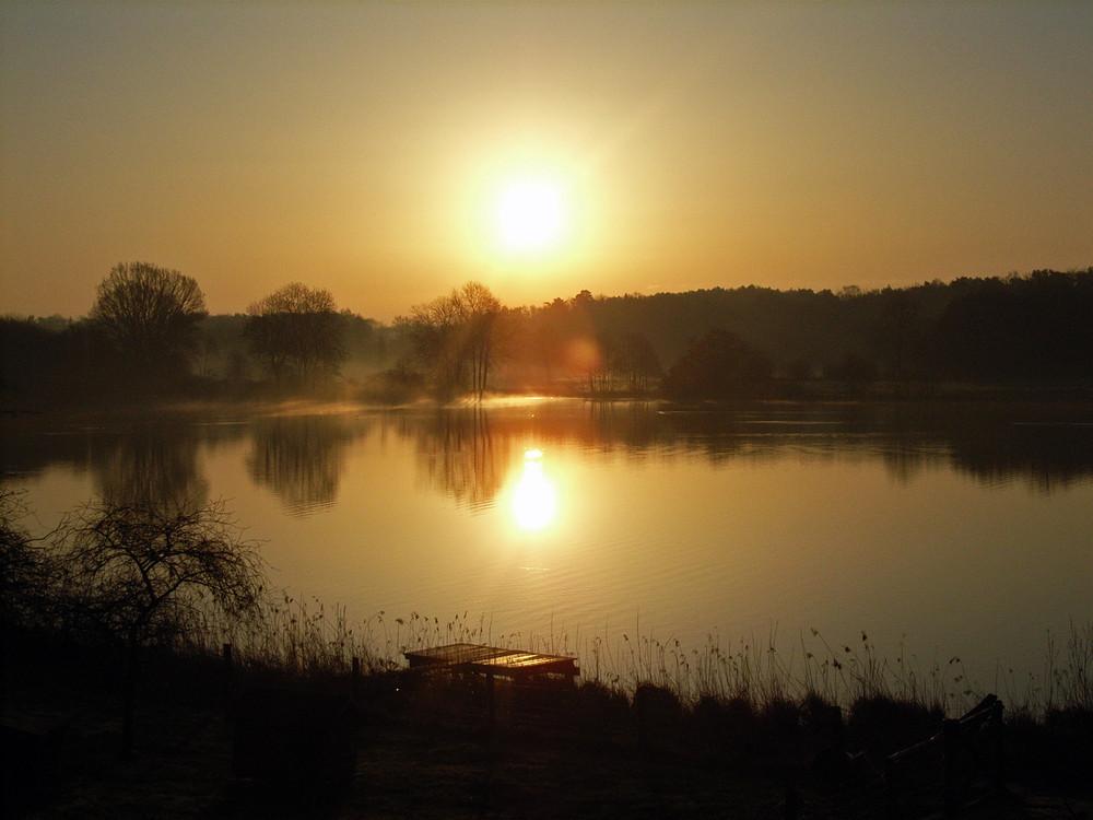 Der Morgennebel