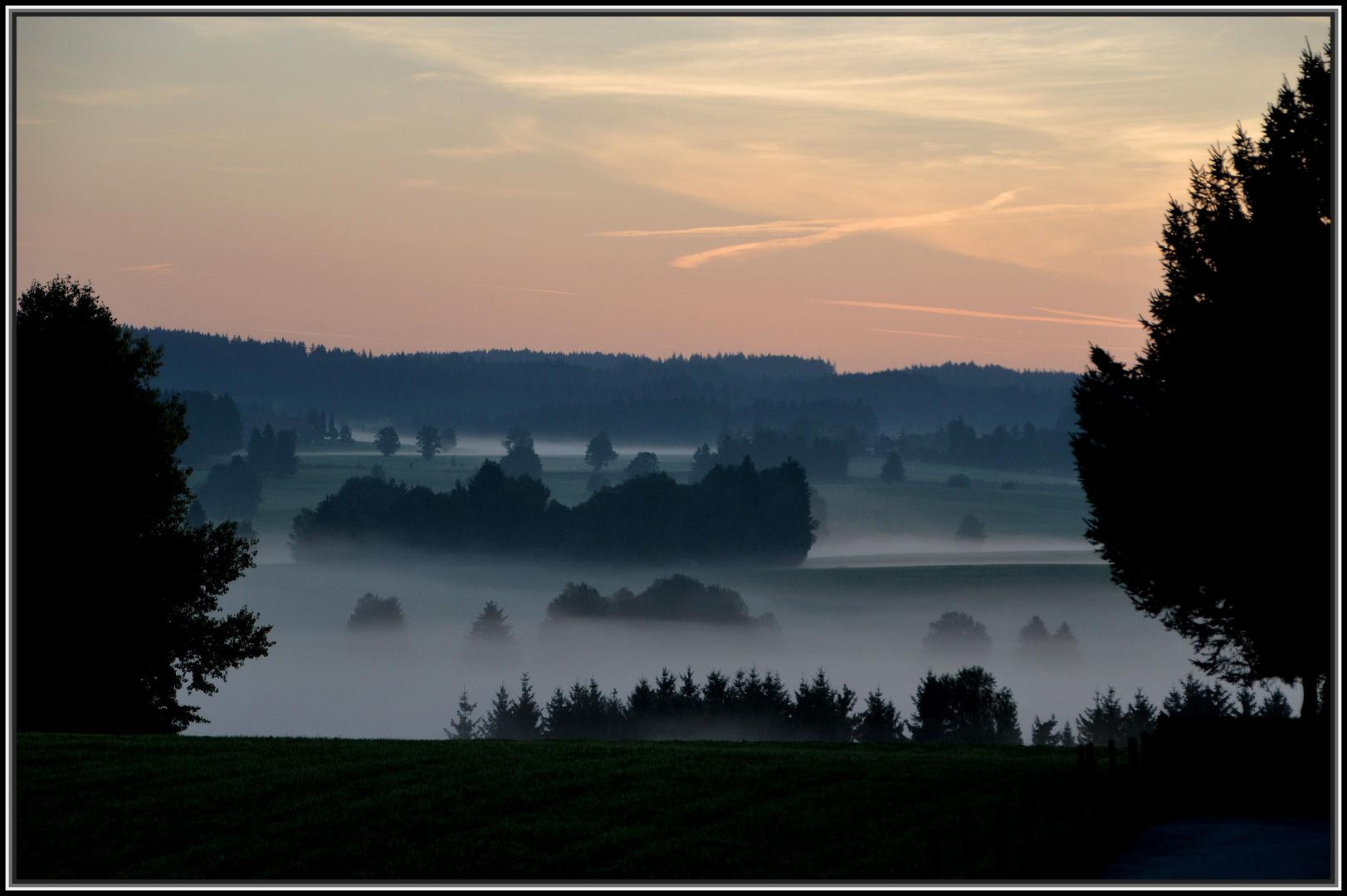 Der Morgennebel modelliert die Landschaft