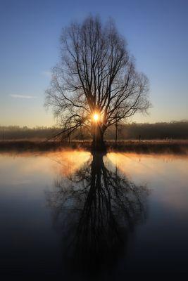 Der Morgenstern