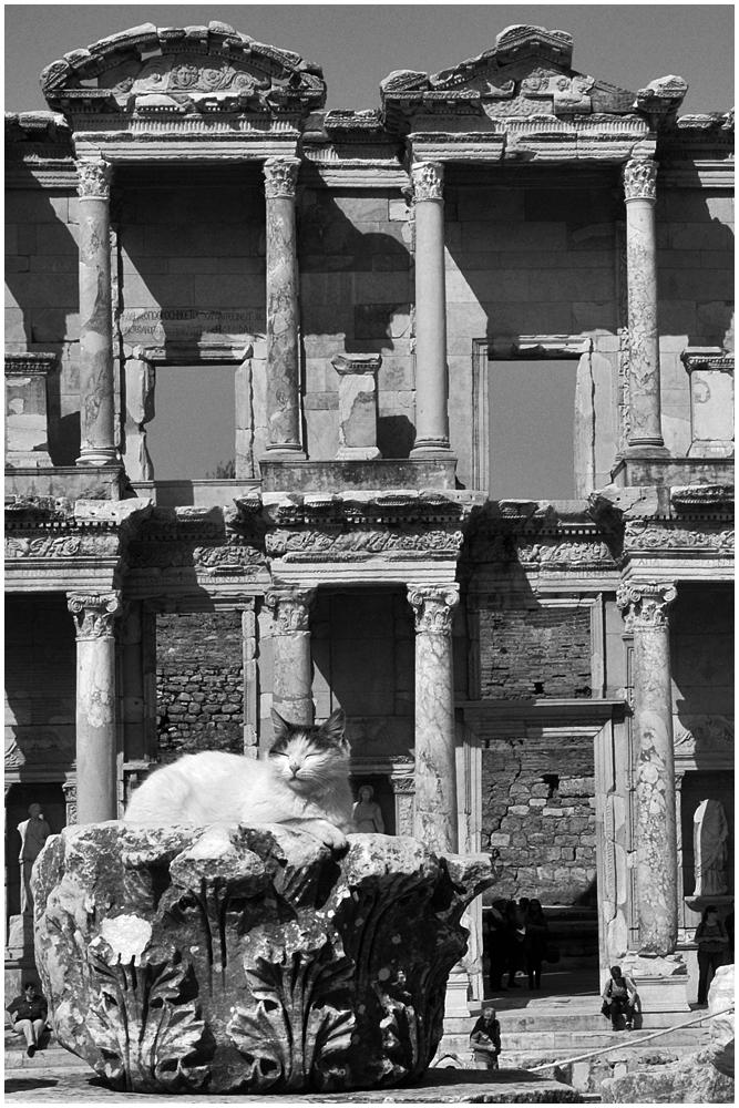 Der müde Wächter von Ephesus