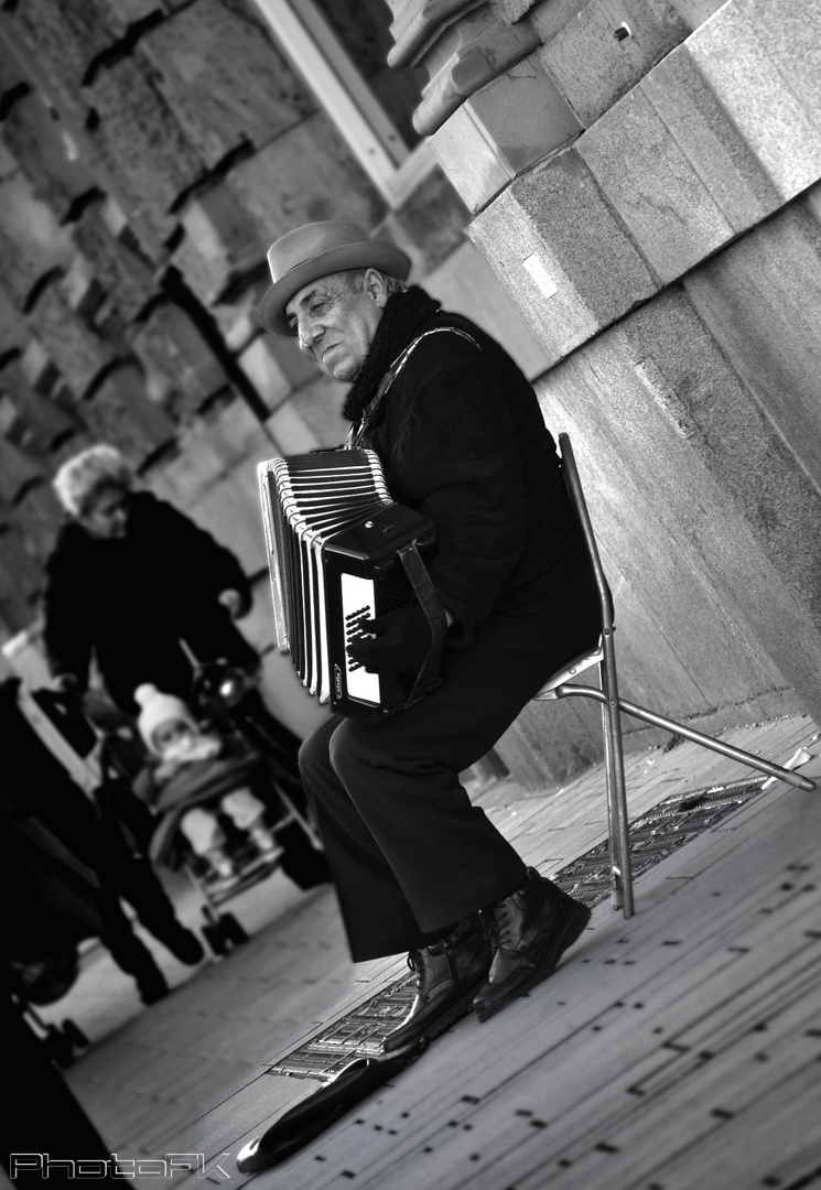 Der Musiker