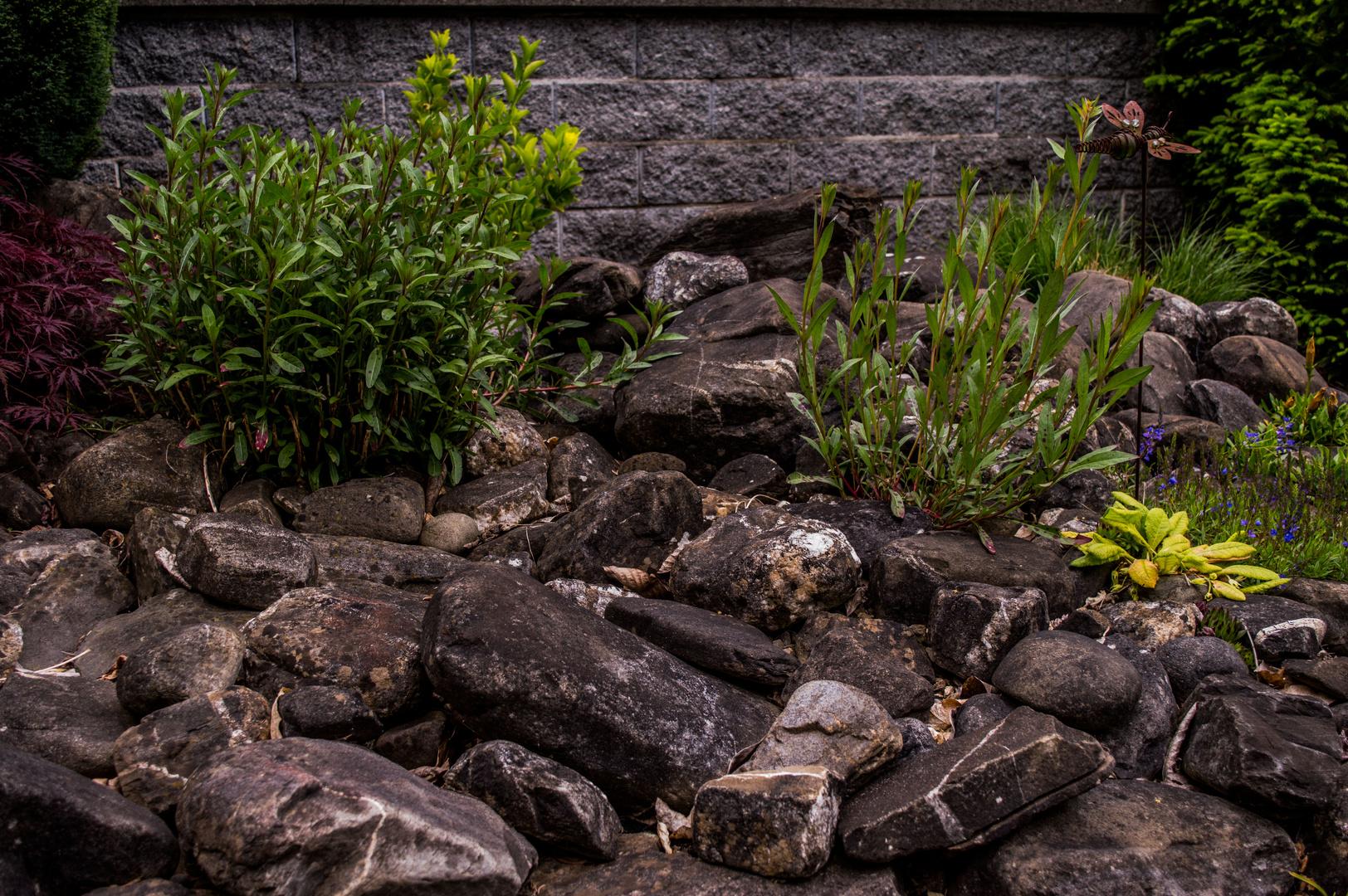 Der Mystische Steingarten