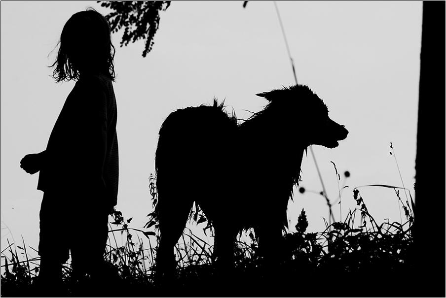Der nasse Hund und das Mädchen