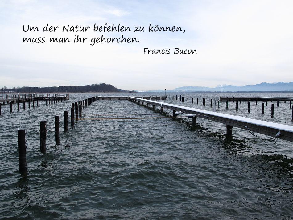 Der Natur gehorchen ...