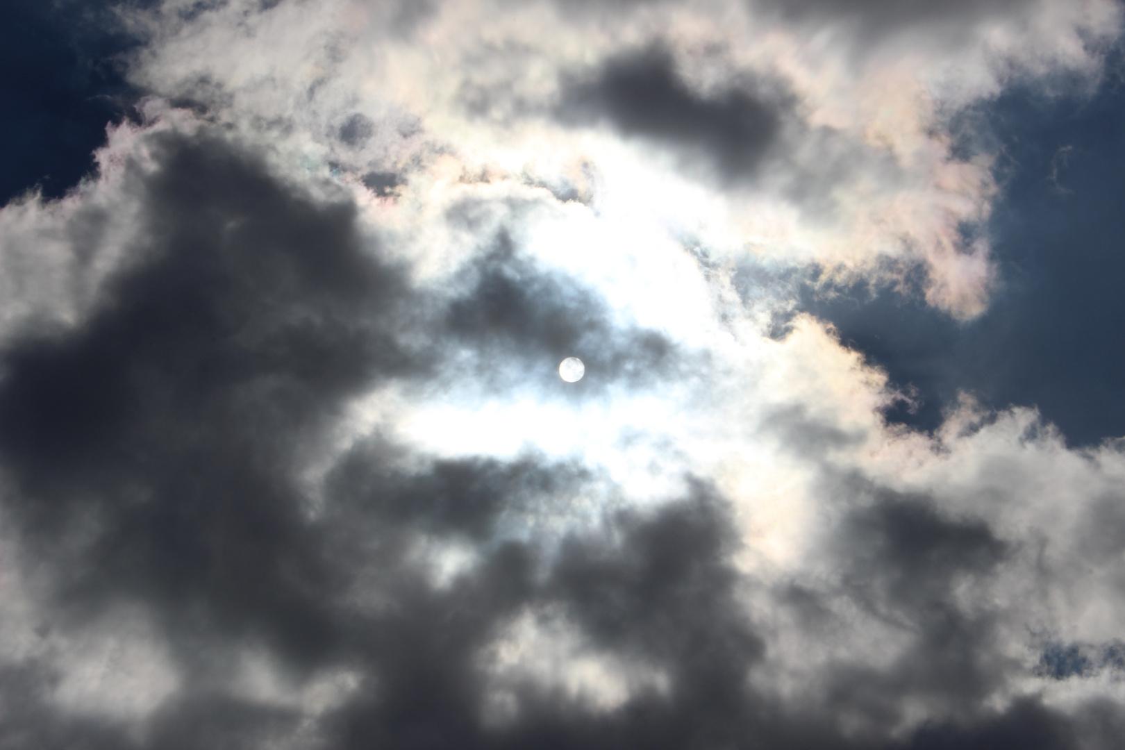 Der naturgeschützte Blick auf die Sonne