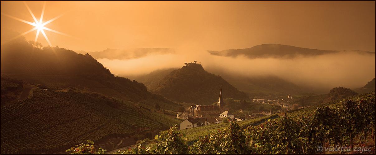 Der Nebel ....